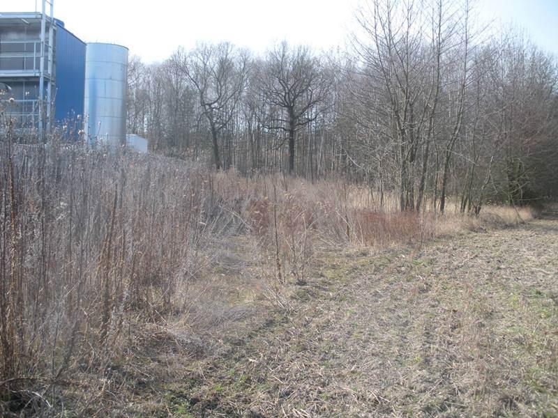 Buštěhrad, pozemek parc.č. 2380, 2381