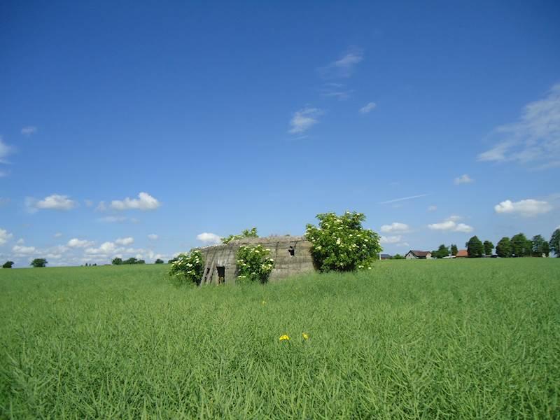 Objekt lehkého opevnění (bunkr) včetně pozemku v