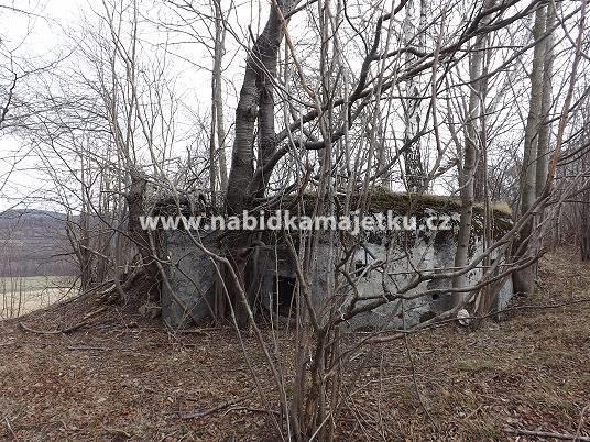 """77210914 (VS): Adolfovice – bunkr (""""řopík"""") SLO"""