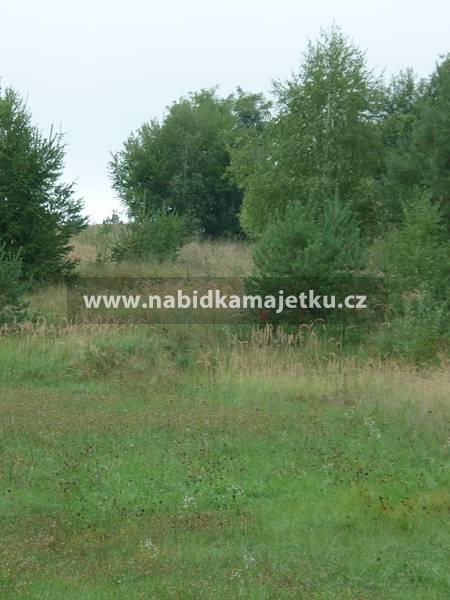 Týn nad Vltavou-pozemky KN 1716/44 a 1716/52